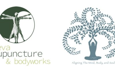 2019 Workshop Series: Meditation and Acupuncture for Digestive and Emotional Health